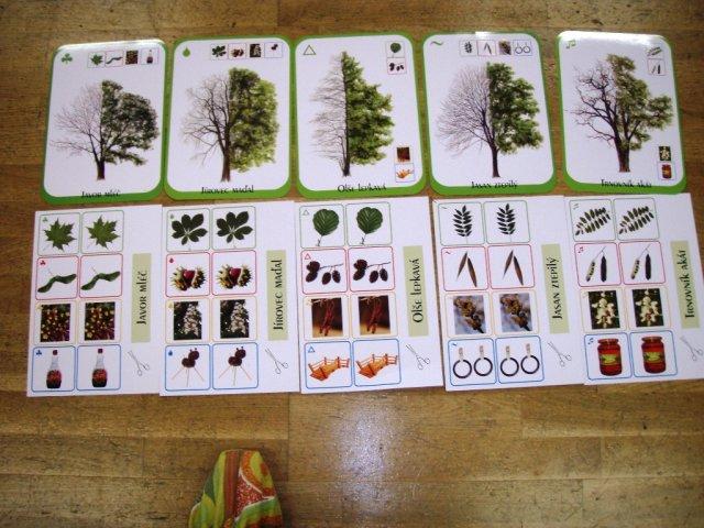 Den_stromu_2_B_04.jpg